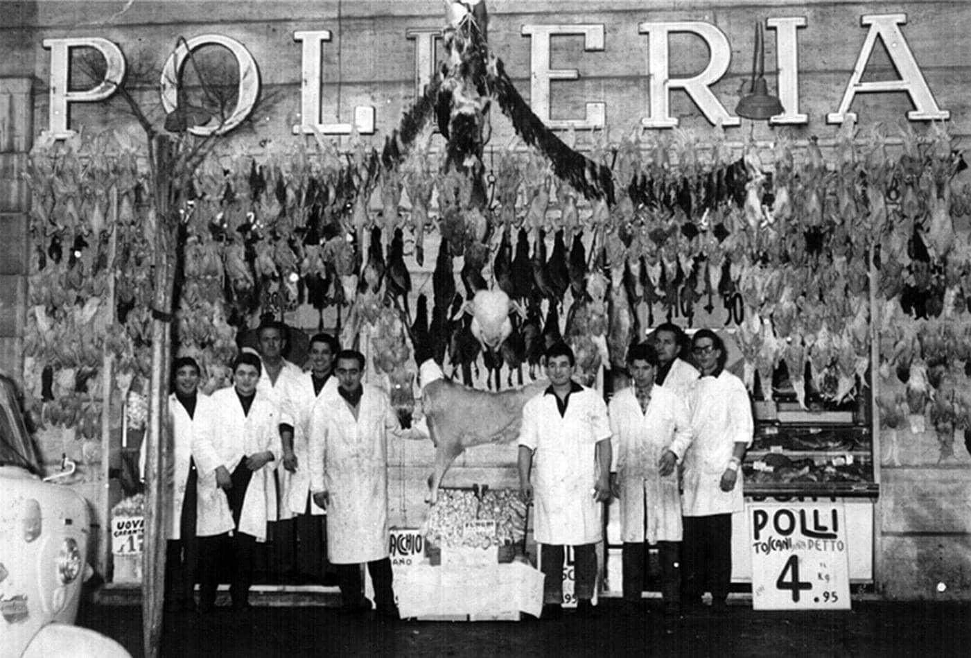 Gruppo Galli Story